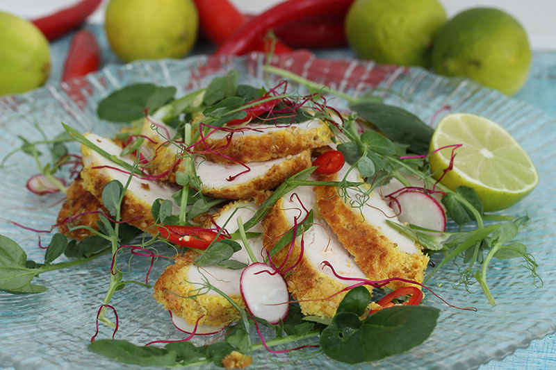 coconut chicken with Asian salad