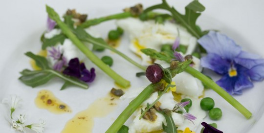 Toonsbridge Buffalo Mozzarella, Spring Asparagus, Garden Pea and Rocket Salsa